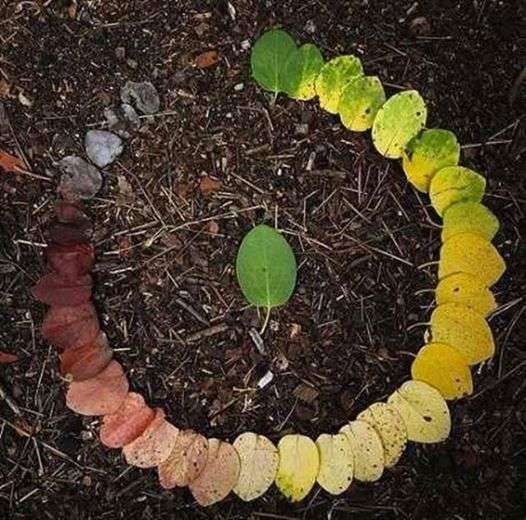 creatività con le foglie effetto arcobaleno