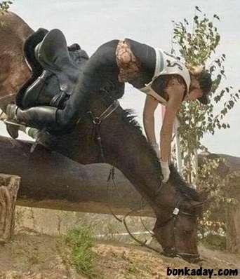 idiota che taglia l'albero