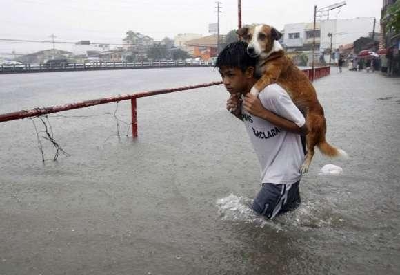Un bambino che salva il proprio cane durante l'alluvione nelle Filippine [2013]