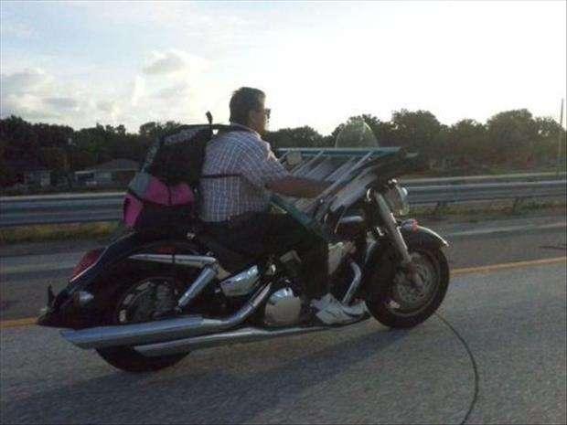 divertenti trasporti in superstrada