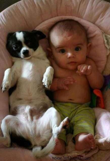 Amore tra cuccioli