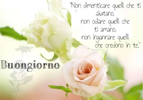 """Immagini """"Buongiorno!"""" (52 Foto)"""