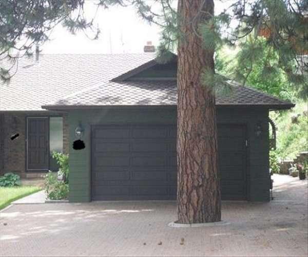 Costruzioni case sbagliate con albero davanti al garage