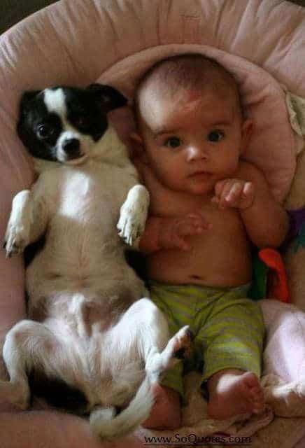 I Bambini Hanno Bisogno Degli Animali 49 Foto Bonkaday Com