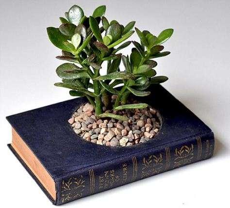 Vaso/libro per le tue piante