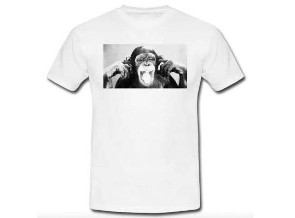 Scimmia bianco e nero