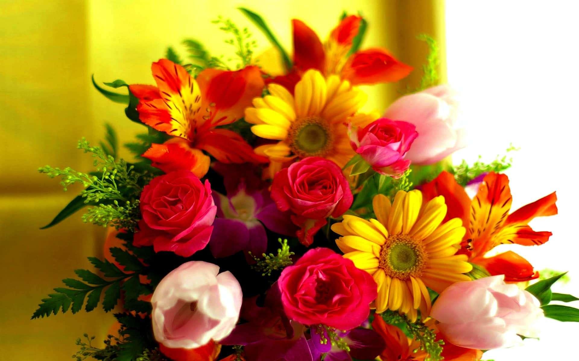 fiori alta qualità