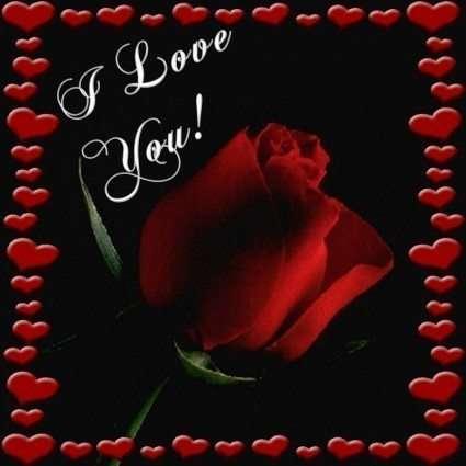 I love you con rosa rossa