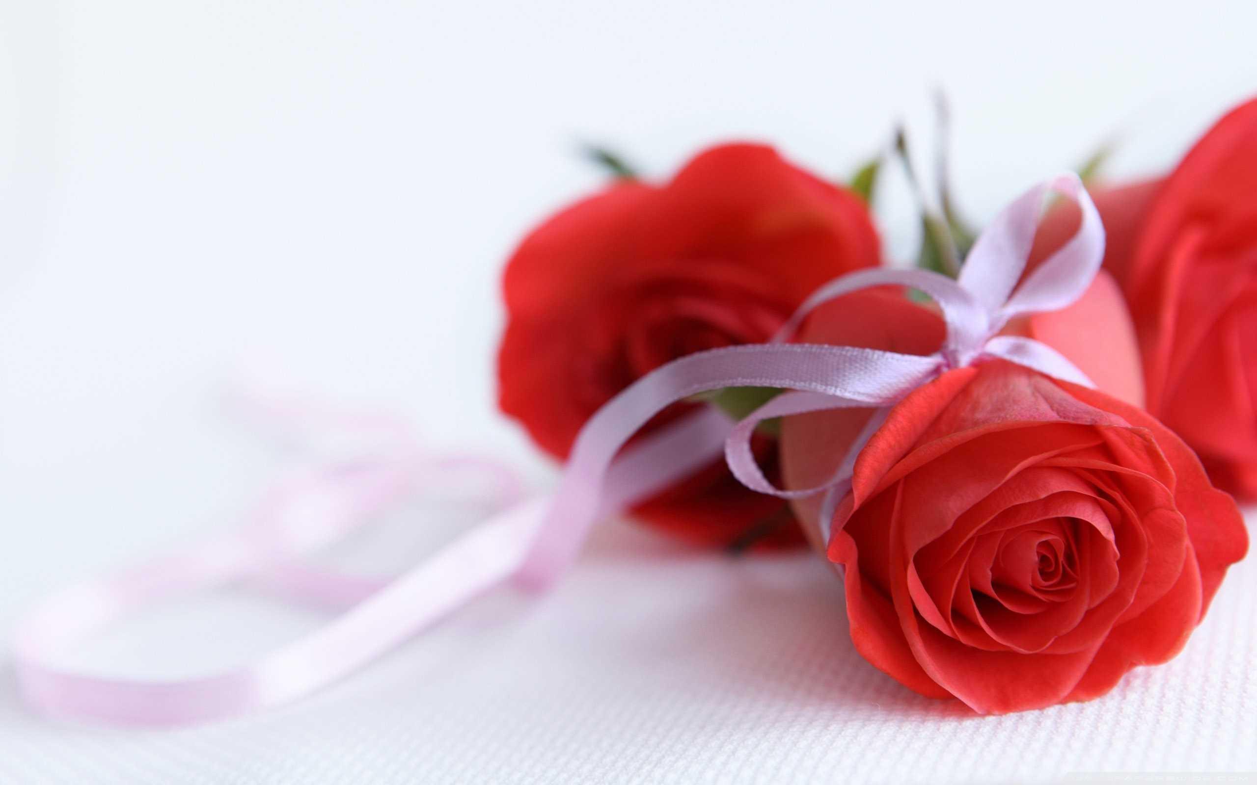 Composizioni fiori fai da te