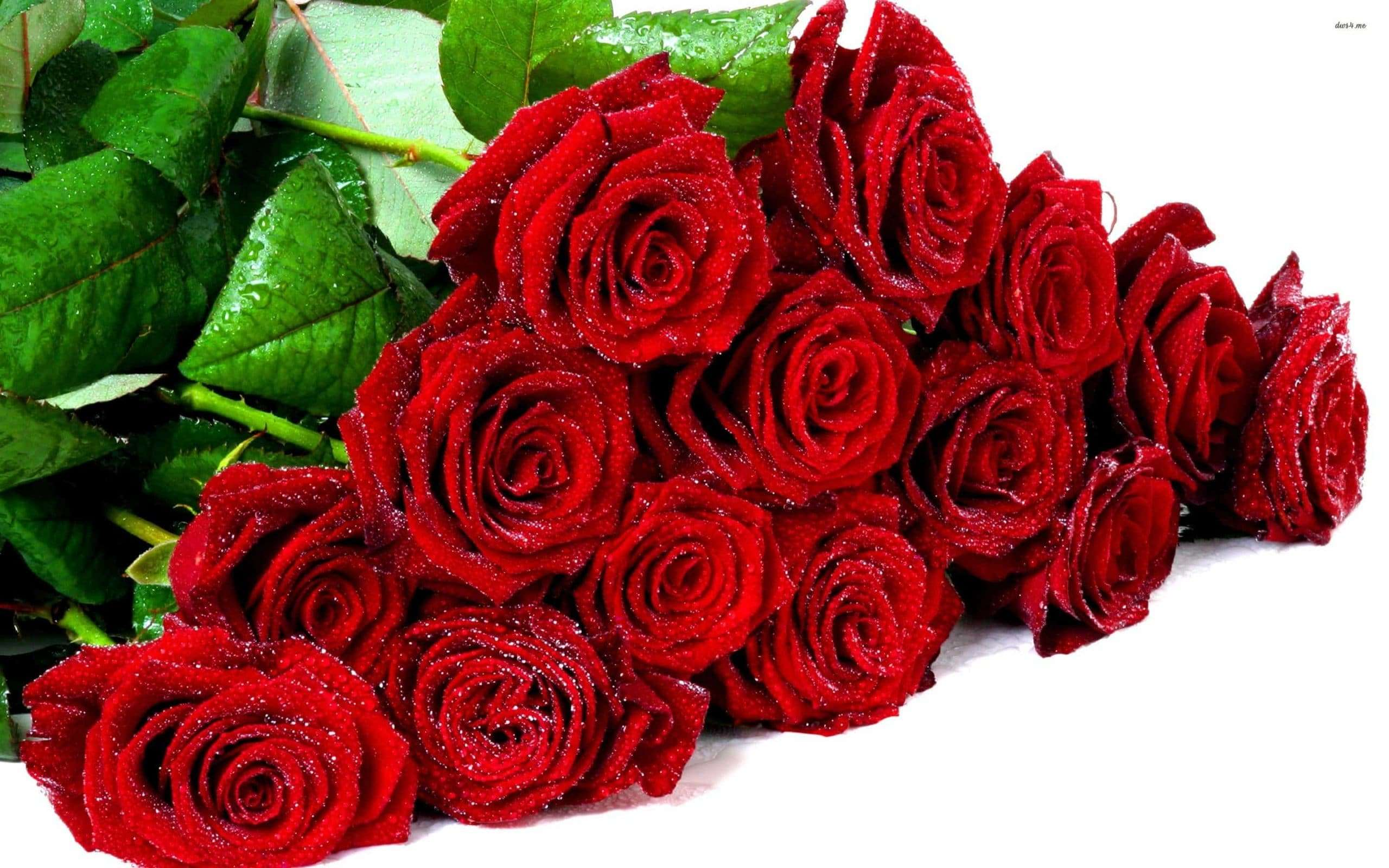 Bouquet rose