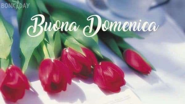 Buona domenica amore con rose