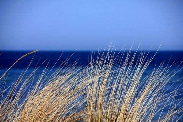 Panorama con il mare in sfondo
