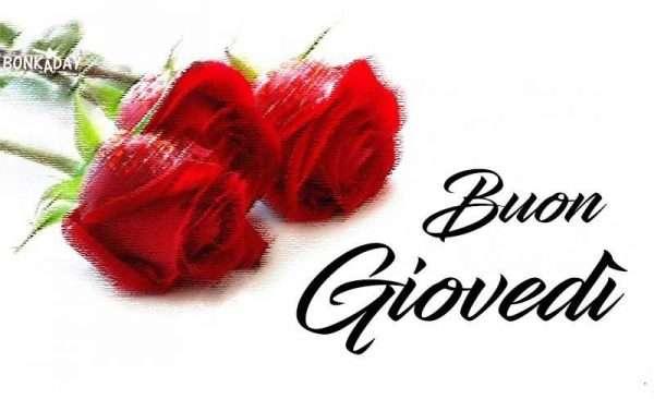 Rose Rosse Buon Gioedì