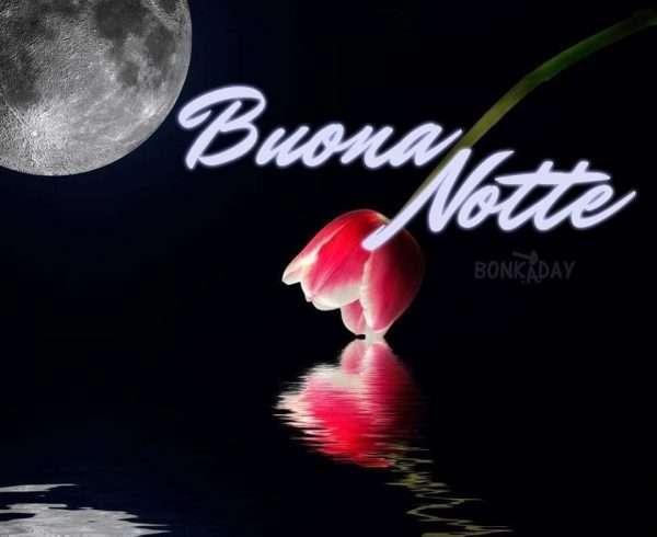Buona notte con fiori