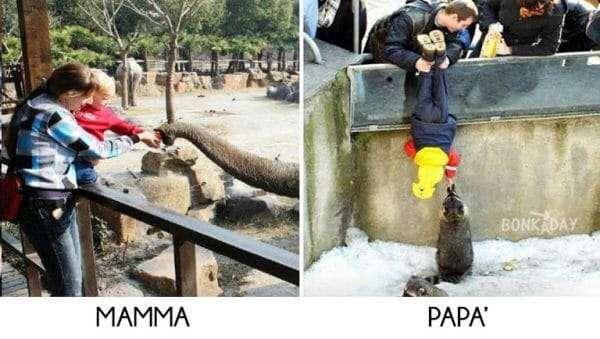 Genitori divertenti allo zoo