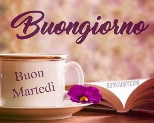 Buongiorno Buon Martedì whatsapp, pinterest e Facebook