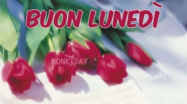 Lunedì immagini con rose rosse