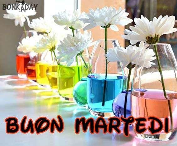 Martedì immagine colorata