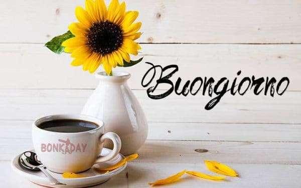 Buongiorno-fiori