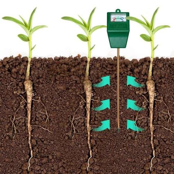 idee utili per giardinaggio