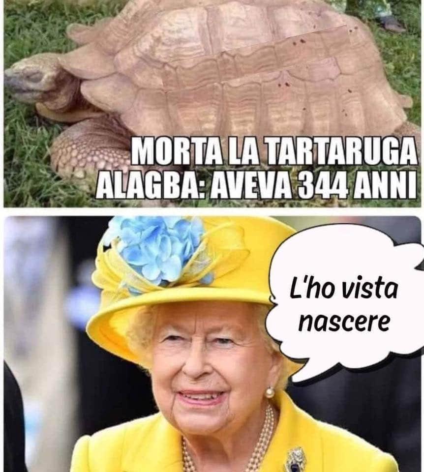 Regina Elisabetta secolare