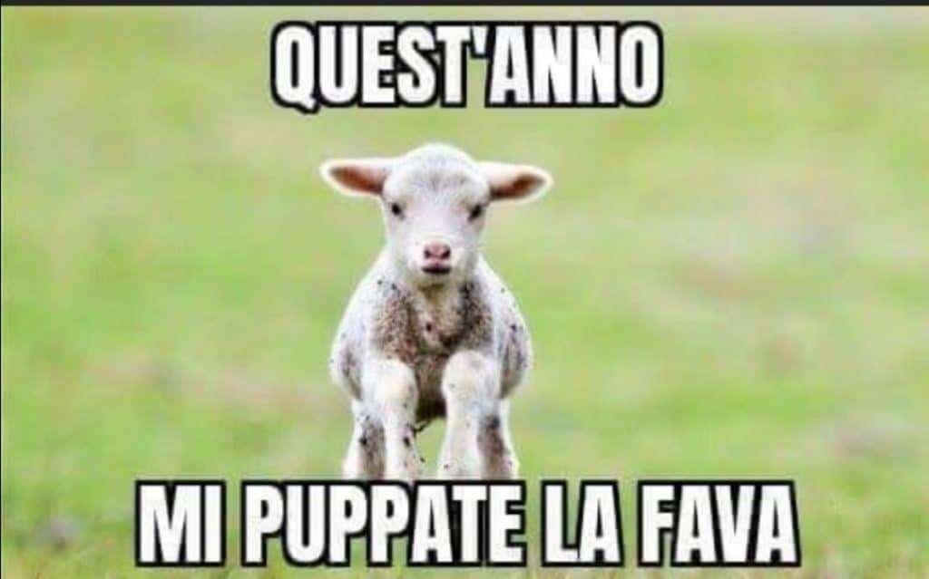 Quest'anno niente agnello